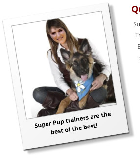 Super Pup trainers are the best of the best!