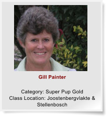 Gill Painter  Category: Super Pup Gold Class Location: Joostenbergvlakte & Stellenbosch